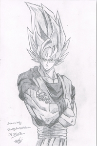 i know it is too late but please except mine son Гоку ssj from dragon ball z