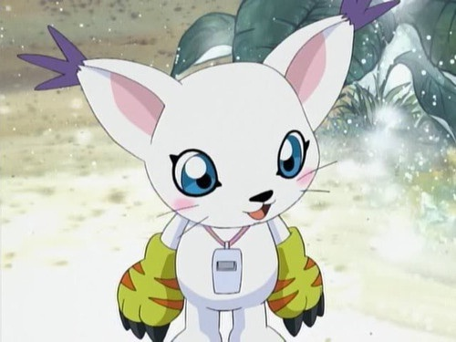 Gatomon!