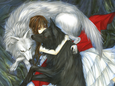 This is Yuki Cross/Kuran from Vampire Knight. She is with two Lupi the silver one is meant to be Zero and the black one is meant to be Kaname. It is so cool!!!! ^ ^
