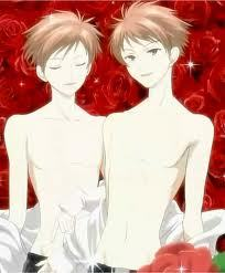 The hitachiin brothers from ouran high school host club