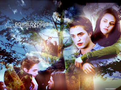 nice pic and i think it wud be sort of stupid...just an identical twilight except his voice in the beginning, más shots of bella and the scenes where it's only bella, wouldn't be there, but they'd be replaced with only edward. 8D