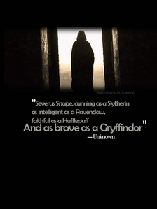 Severus Snape,without a doubt. He's strong, determined, cunning, protective, sarcastic,brilliant,wise,reserved,loyal,brave, caring,gorgeous and sexy!