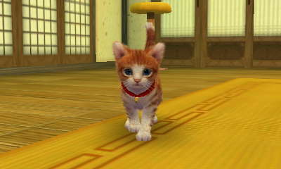 I like Kucing but, I like Anjing better. Heres my cat from Nintendogs+cats :3
