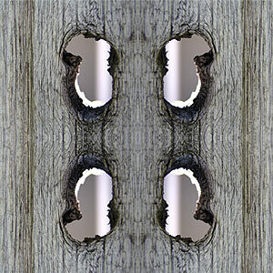 I look like symmetry. Eyup.