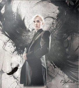 Prince Draco! (it's real pic only change the background)