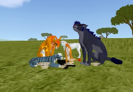 play wolf quest no download