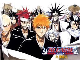Bleach fact:Bleach was about be called Black because of the soul reapers' clothes are black but it got called Bleach because of the main characters clothes are white.I think Bleach should be called Black but at the same time i want it to still be called Bleach.^_^
