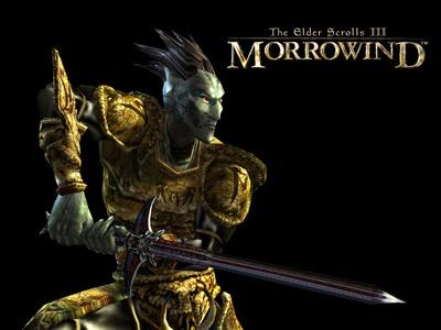 the elder scrolls 3 -morrowind.its RPG .