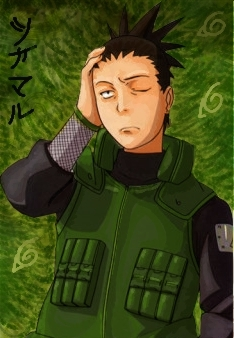 Shikamaru, because I am very lazy and unmotivated. I don't really like talking to people and I sit off somewhere to zone out. I also watch the clouds on nice sunny days. I can also beat quite a few people at chess and well.. I'm good with strategy and my grades are high. I hardly do my homework on time though...because it's kinda a drag.. I can also sleep until 1 PM hoặc later..