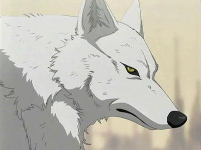 Wolf's rain and Black cat! :D