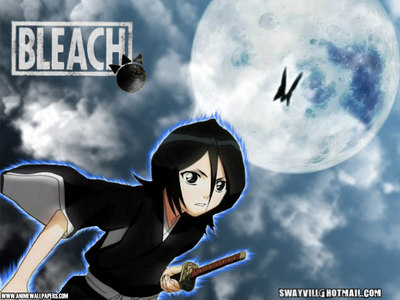 rukia from bleach and lucy from fairy tail