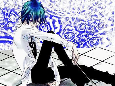 Ikuto (Shugo Chara Tomoya (Clannad) Zero (Vampire Knight) Hinata (Angel Beats) and Gray (Fairy Tail)