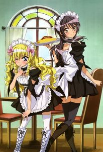Misaki Ayuzawa and Aoi Hyoudou from Maid Sama P.S:Aoi is a boy (the one with the blonde hair) but he loves crossdressing as a girl those who watched the Anime will know :)