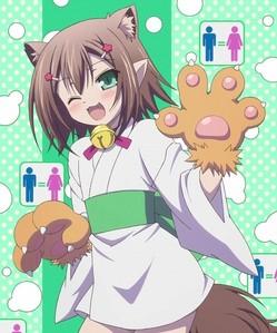 Hideyoshi from Baka to test!!!