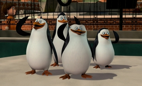 THESE incredibly AWESOME, cute, funny and psychotic penguins! :D