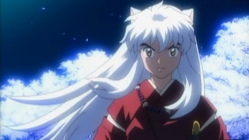 Yes Inuyasha has different ears because it represents him as a hanyou, he is different so he was made to appear different from both Sesshomaru and their father, whom are both full demons. Also because it just looks cute and is a populaire image.... fuzzy ears, girls l'amour it XD