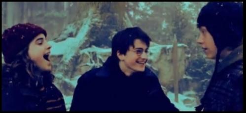 Harry Potter <33