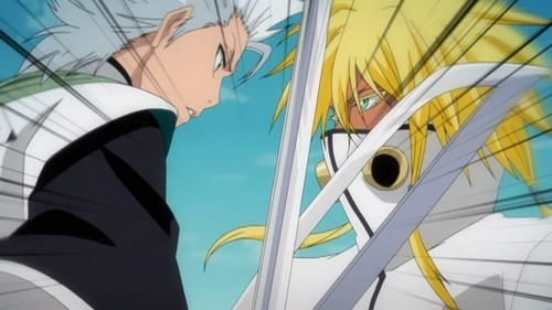 halibel and toshiro from bleach