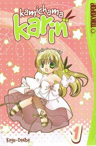 Kami chama Karin, I can not find it anywhere and the internet gives me crap.
