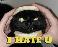 I don't hate any. O_O............