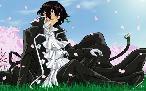 Gilbert (Raven) Nightray from pandora hearts