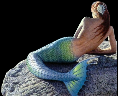bad mermaid your a bad mermaid you are:evil, discriminating, pretty, harmful, persuasive and a carnival