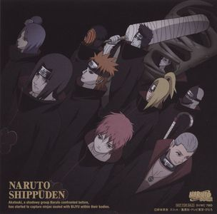 Akatsuki So much epicness in that group, seriously. :)