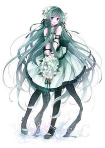 I call her,Shirayuri (White Lily).