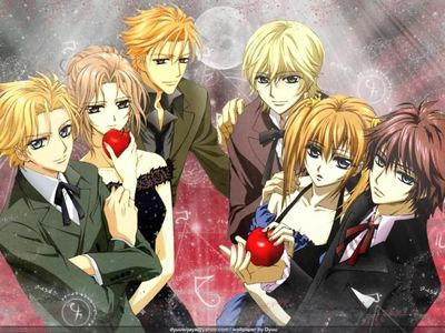 I couldn't decide beacuse there are so many people in tuxes and dresses. So, i just choose the night class from vampire knight