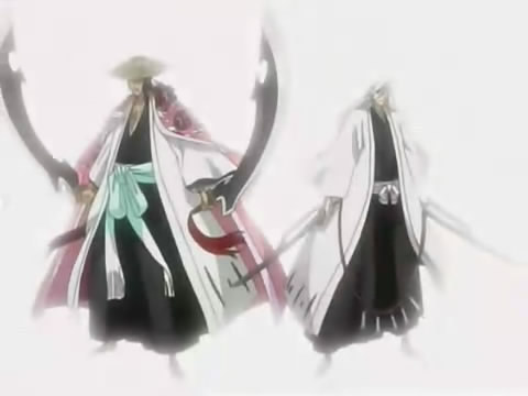 Shunsui Kyōraku and Jūshirō Ukitake Best tag team fighters I've seen. Especialy since they can take on Head Captain Yamamoto and survive.