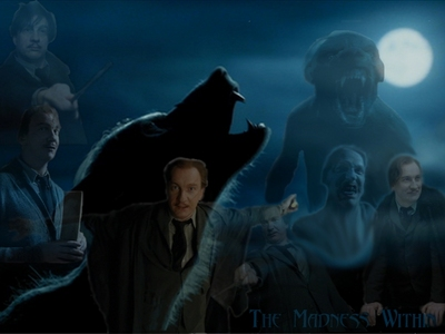 remus lupin is so the best and hot
