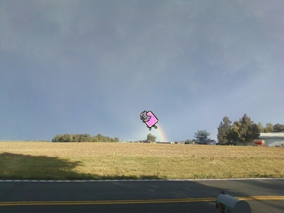 Catch Nyan cat. (I was so close....)