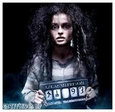 Bellatrix's Azkaban symbol. She's holding it in case আপনি couldn't figure that out!