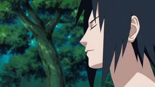 Oooh this pregunta was just made for me! xD I have so many favourite expressions from Sasuke, but this subtle smile of his is probably the best <3 I also amor the misceláneo expressions he makes (pre shippuden) when he goes out of character xD