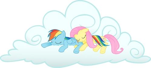 Fluttershy x arc en ciel Dash :)