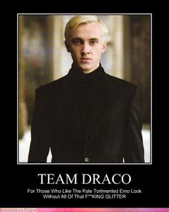 i know this has already been dicho but im gonna say it again... team draco the pic says-[for those who like the pale tormented emo look without all the F**KING GLITTER]