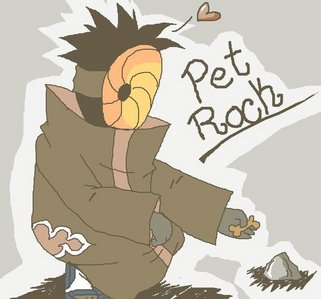 ....... Tobi has a pet rock.