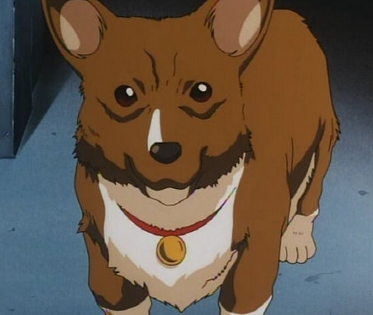 Reoccurring anime animal I like..Right now my favorite has to be Ein from Cowboy Bebop!