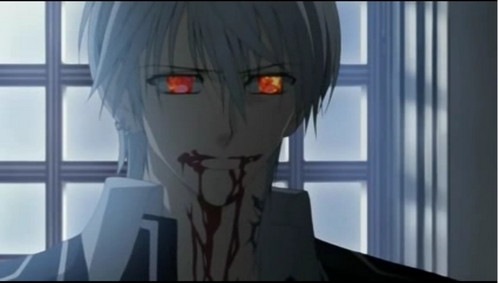This is ok? Zero from Vampire Knight