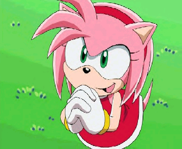 mine would have to be: amy rose. from sonic x. she was such a little fucking anoyying brat!!1 god i hated her so much. even in the dub she sucked!