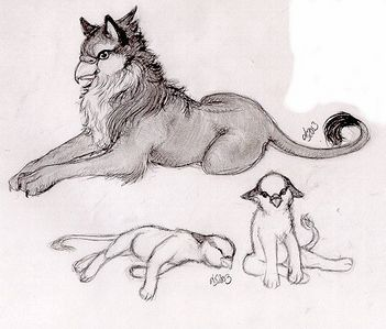 I would like to be a Griffin because they arent afraid of anything and Im love eagles and tigars!!! and tell me that those babies arent cute