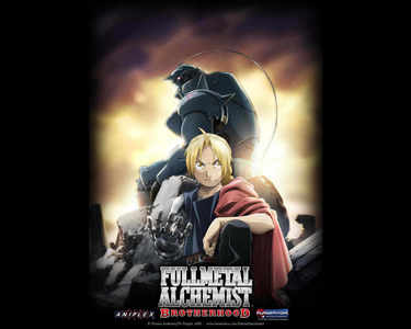 In Fullmetal Alchemist: Brotherhood!:D I really wanted to experience an adventure and action with the Elric Brothers!:D
