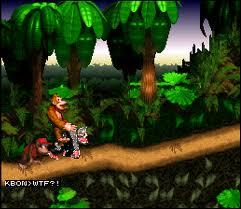 ... unless my eyes are deceiving me, Donkey Kong is riding and/or humping an albino clone of himself.
