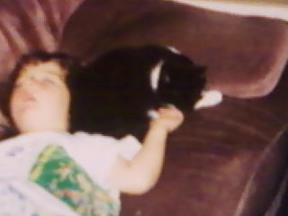OMG!He is so adorable!Makes me miss my old cat who died from Kidney Failure!:( R.I.P Holly! The picture is of me and my cat!
