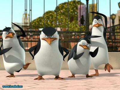 "Yes... THESE 4 PENGUINS!!! :D Skipper, Kowalski, Rico and Private from ""The Penguins of madagascar"" :D"
