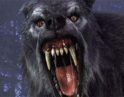that im not a werewolf no im serious im not kidding