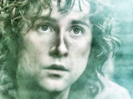 enough with this Aragorn, Legolas, and Frodo crap... I WANT MY PIPPIN!!!!!