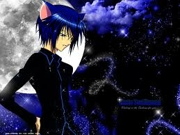My animé crush is Ikuto Tsukiyomi And its normal to crush on an animé charater. :PP