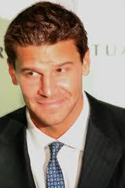 David Boreanaz. Mainly because he plays Sealy Booth, one of the greatest FBI agents EVER.