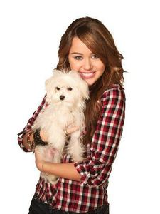 i really luv Miley than Selena..♥♥